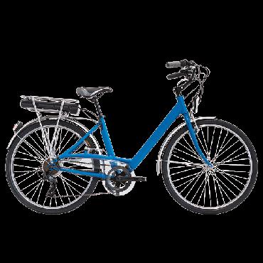 Bici elettrica e-bike
